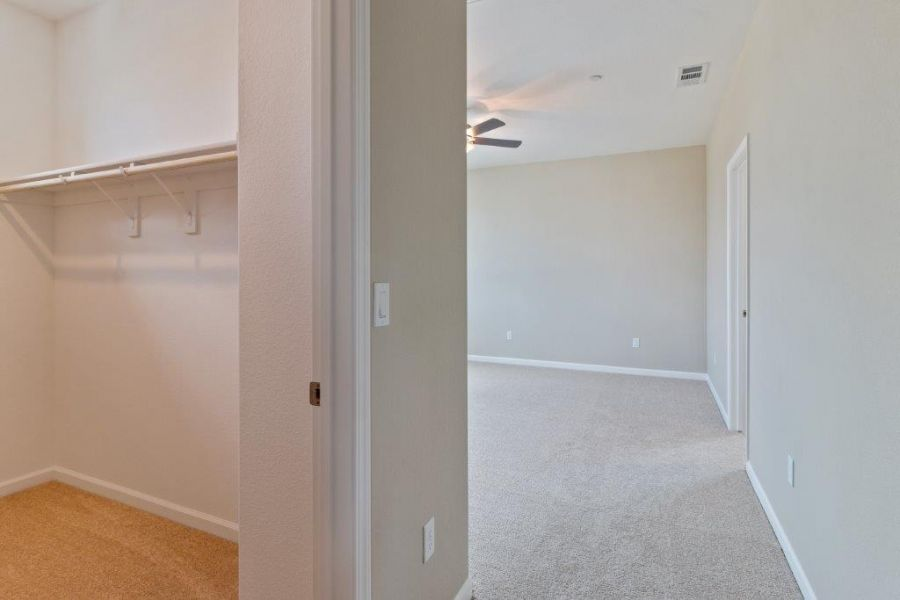 Entry to Master and Walk-in Closet