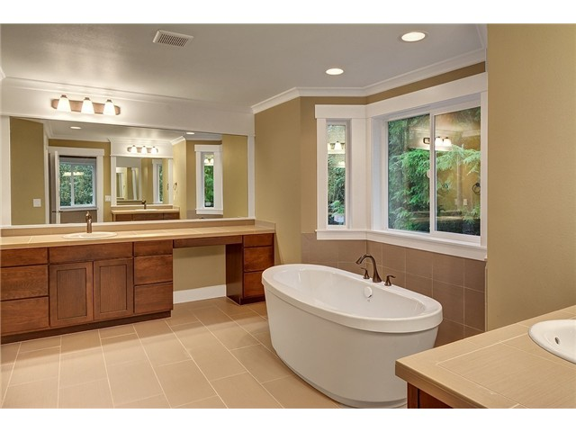 11028 Home Master Bathroom Interior Image