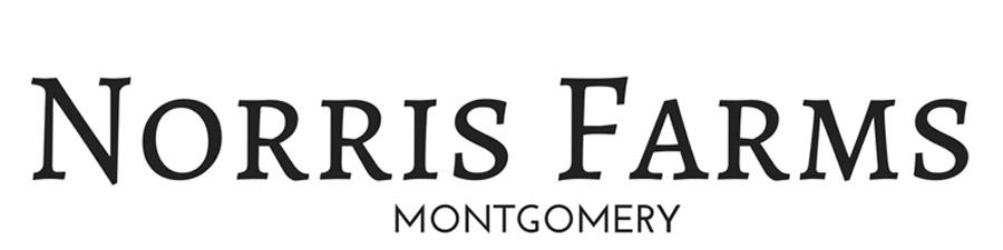Norris Farms Community by Goodwyn Building